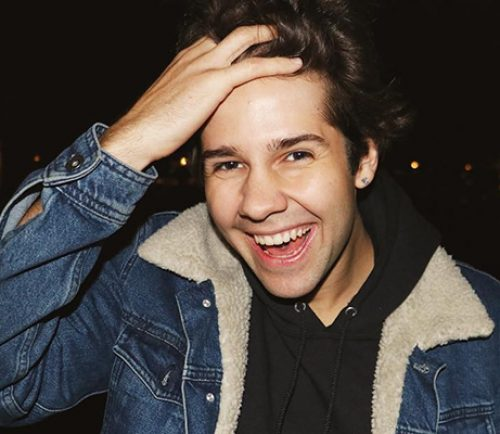 YouTube star David Dobrik.